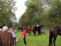 Ernte-und-Tierschaufest-2014-029